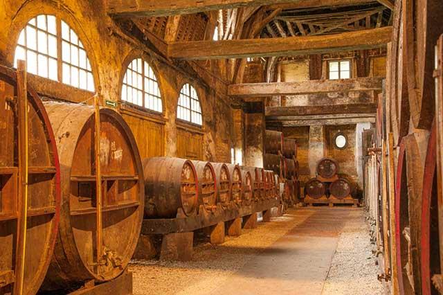 Tiefe Einblicke in sächsische Destillate